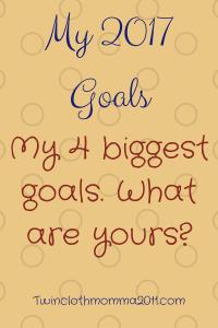 my-2017-goals